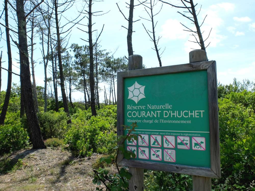 reserve naturelle courant d'huchet landes