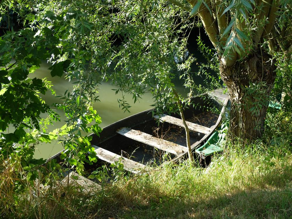 marais poitevin barque