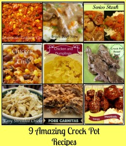 9 Amazing Crock Pot Recipes - Detours in Life