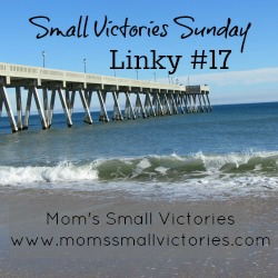 Small Victories Sunday Linky 17