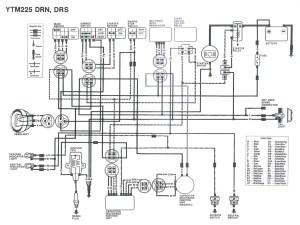 Suzuki Bandit Wiring Diagram Free | Wiring Library