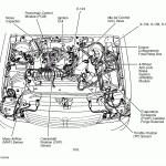 Toyota 4 0 Engine Diagram Wiring Diagram Ground Design Ground Design Carmenpellegrinelli It