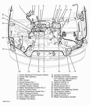 2005 toyota Taa Engine Diagram | My Wiring DIagram