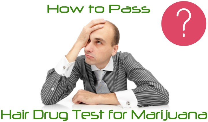 How To Pass A Hair Test For Has Been One Of The Most Por Questions That We Have Received From Many Users Facing This Reality Over