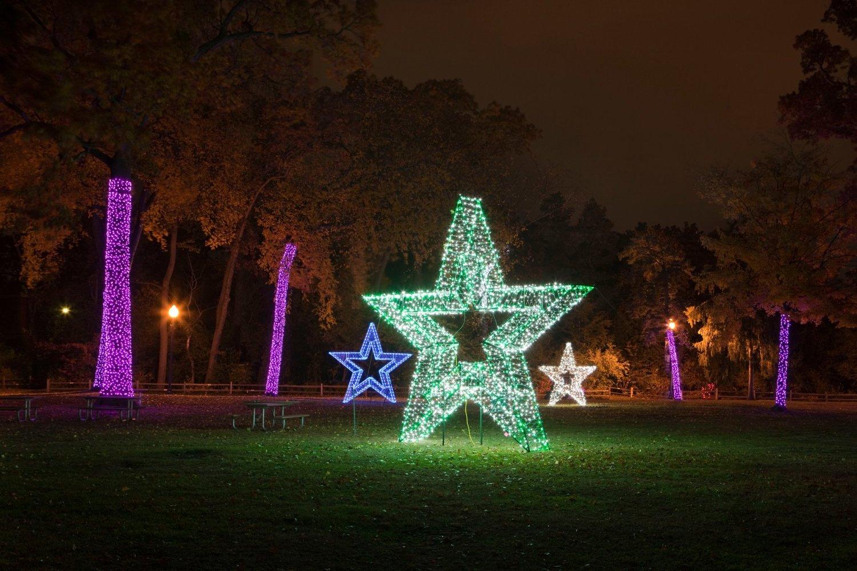 Zoo Lights Michigan