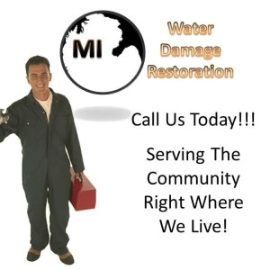 Detroit MI Water Damage Restoration Service and Mold Remediation Logo