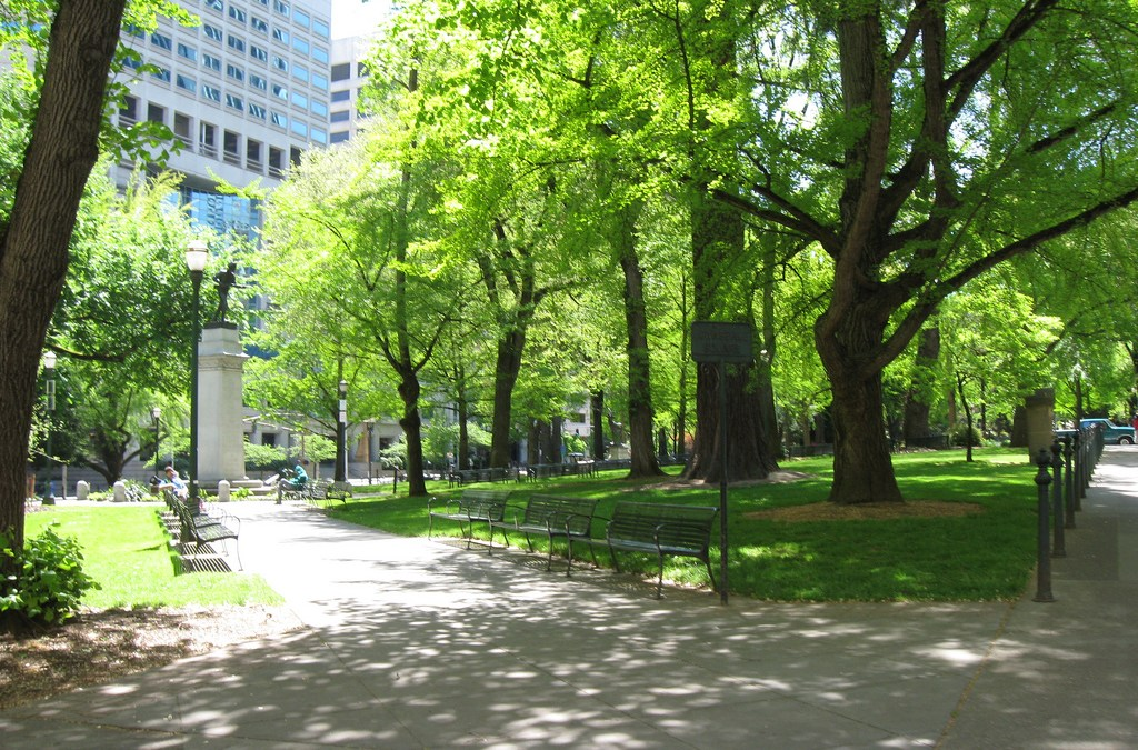 Help the City of Detroit Find Great TREE PLANTING Locations!