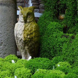 Cast Stone Owl Standing 1