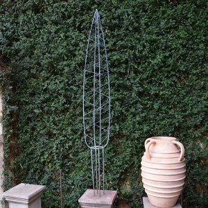 Italian Cypress Topiary Form