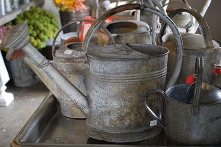 Vintage-Watering-Cans2