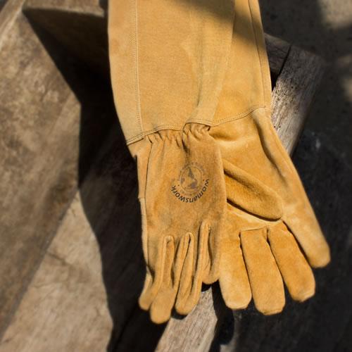 long_womanswork_gloves.jpg