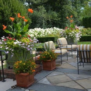 landscape and garden by Deborah Silver and Co