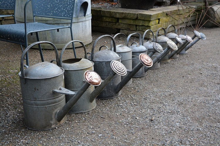 Brass Rose Watering Cans Main