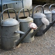 Brass Rose Watering Cans left