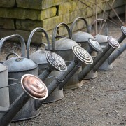 Brass Rose Watering Cans