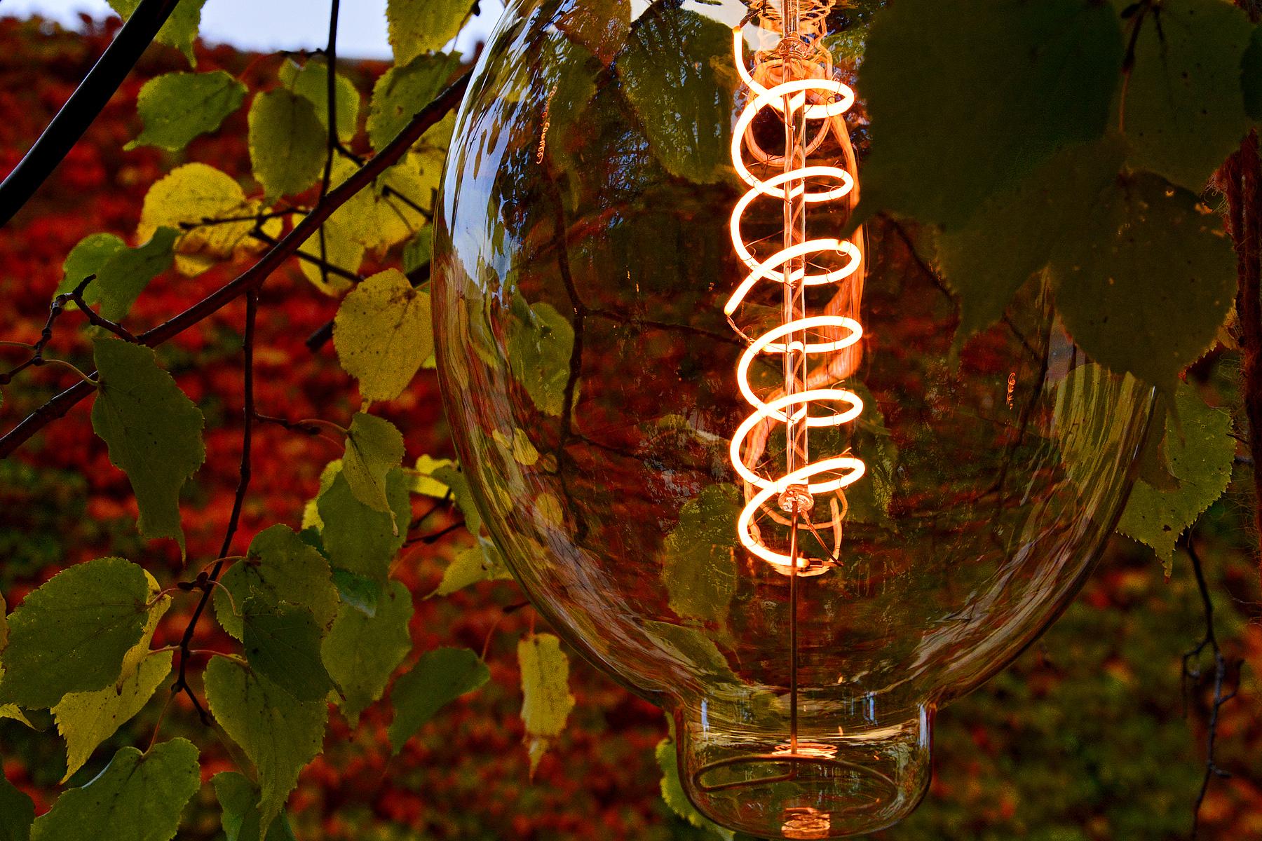Edison Style Patio Lights – Detroit Garden Works
