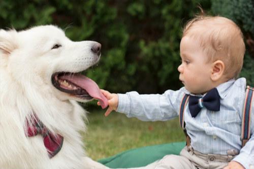 ninos-que-crecen-con-un-perro-tienen-menos-riesgo-desarrollar-asma
