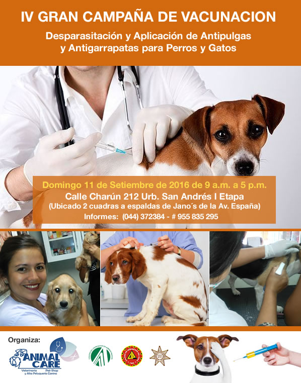 vacunacion-perros-gatos