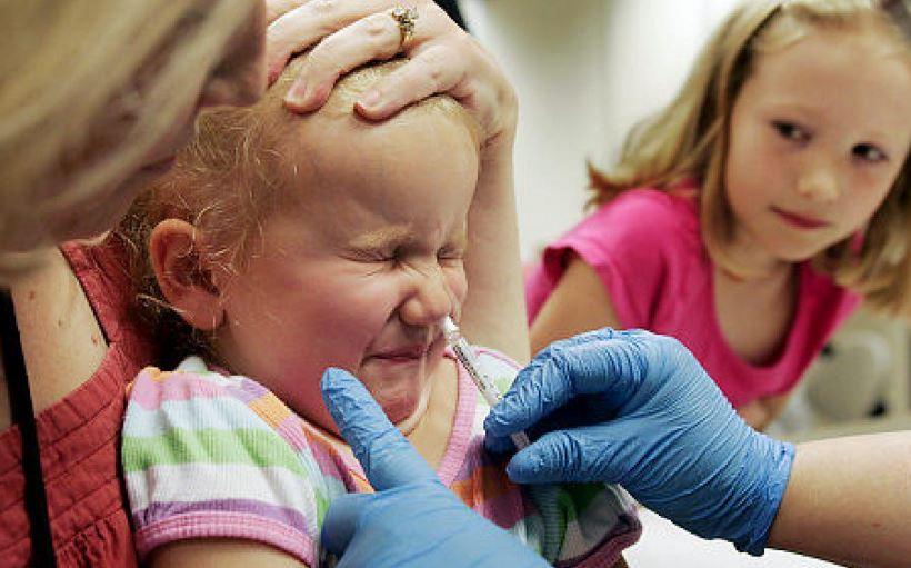 """Свиной грипп: чем он опасен для детей и чего боятся """"свинские"""" бактерии?"""