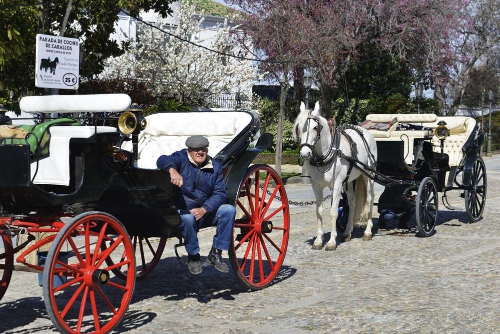 Ronda vogn, hest og vogn, Andalucia