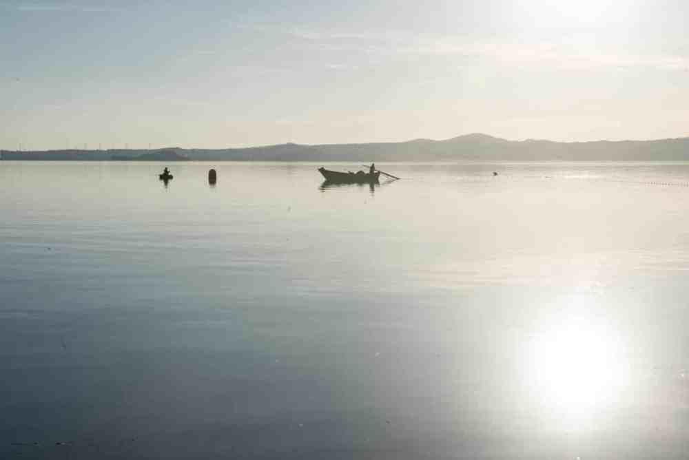 Bolsenasjøen
