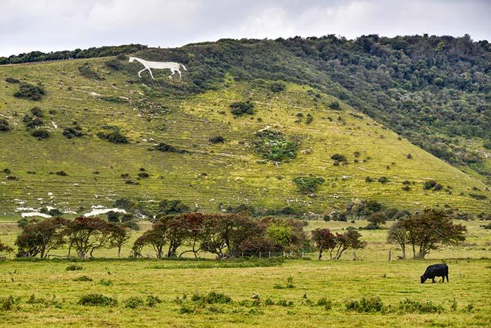 Litlington White Horse i East Sussez