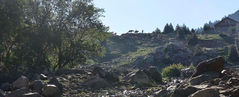 Hest i horisonten i Valamara-fjellene