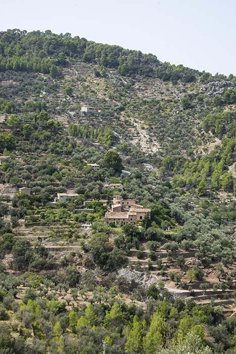 Gård med jordbruksterrasser i Deià på Mallorca