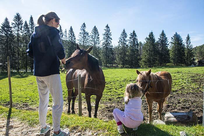 3-åring og mamma ser på hest på bondegårdsferie