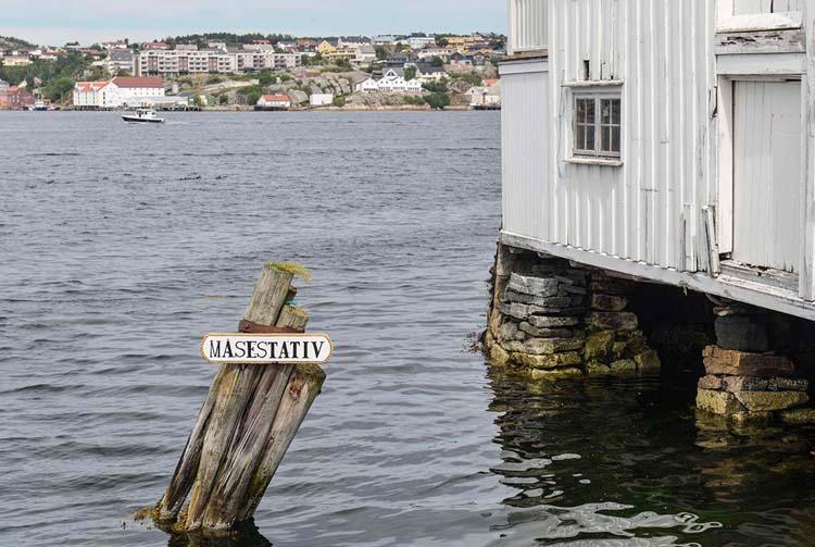 Måsestativ ved Innlandet i Kristiansund