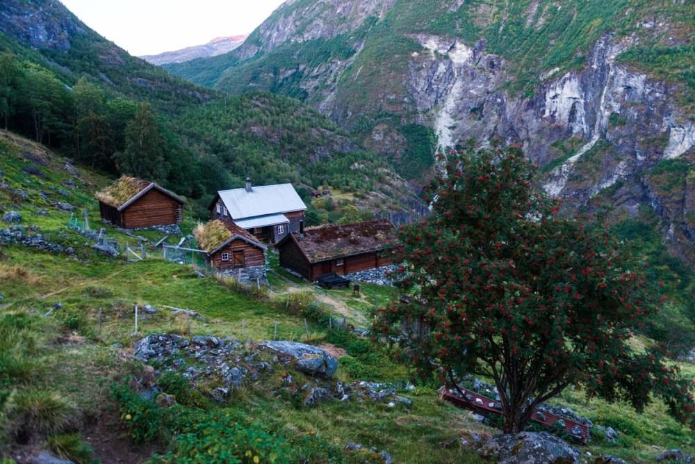 avdalen gard ligger høyt over Utladalen i Årdal