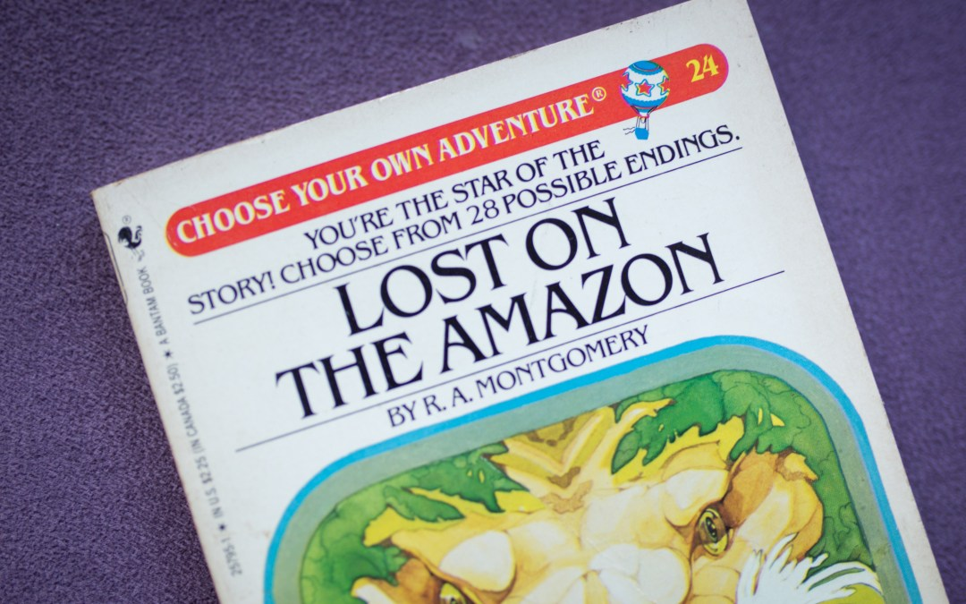 Choose Your Own Adventure: 5 Steps to a Sustainable Strategic Plan
