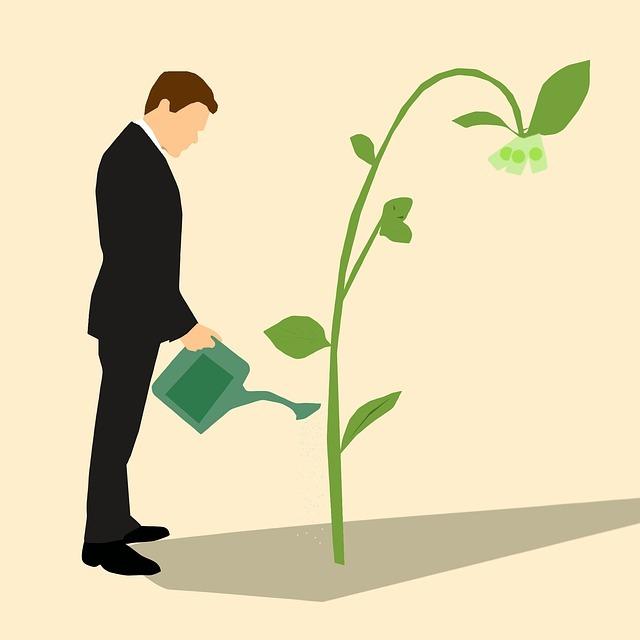 Diferença fundamental para o sucesso está em colaborar mas é preciso persistir