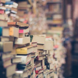 Bücher von Marijas Kollegen