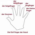 Die Finger der Hand