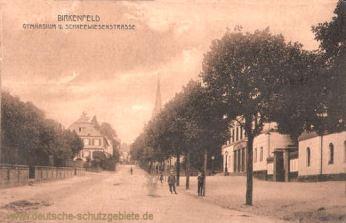 Birkenfeld, Gymnasium und Schneewiesenstraße