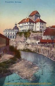 Frauenfeld, Schloss