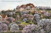 Guben, Engelmanns Berg in der Baumblüte