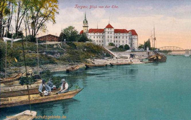 Torgau, Blick von der Elbe