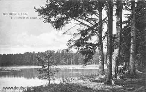 Gehren, Seerosenteich im Esbach