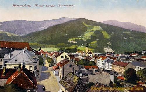 Mürzzuschlag, Wiener Straße