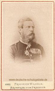Kronprinz Friedrich Wilhelm, 1878