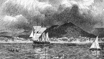 Adler im Hafen von Apia