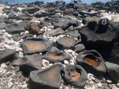 Lapakahi national park - Récupération de sel
