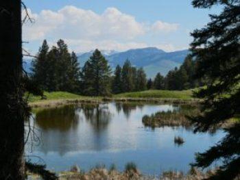 Beaver Pond randonnée