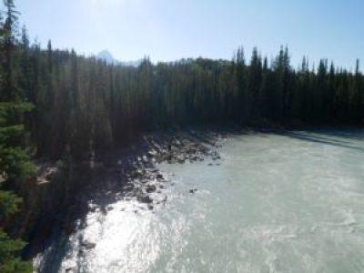 Plage des chuttes d'Athabasca à Jasper