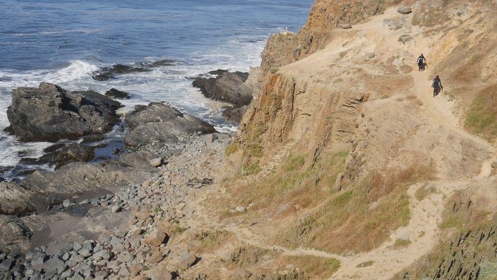 Surfers à Punta de lobos - Journal de bord au Chili