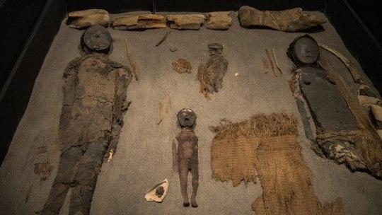 Momies du Museo Arqueologico San Miguel de Azapa