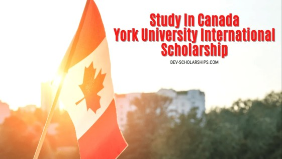 York University International Scholarship To Study In Canada