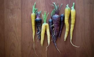Carrots photo by Paul Dunn